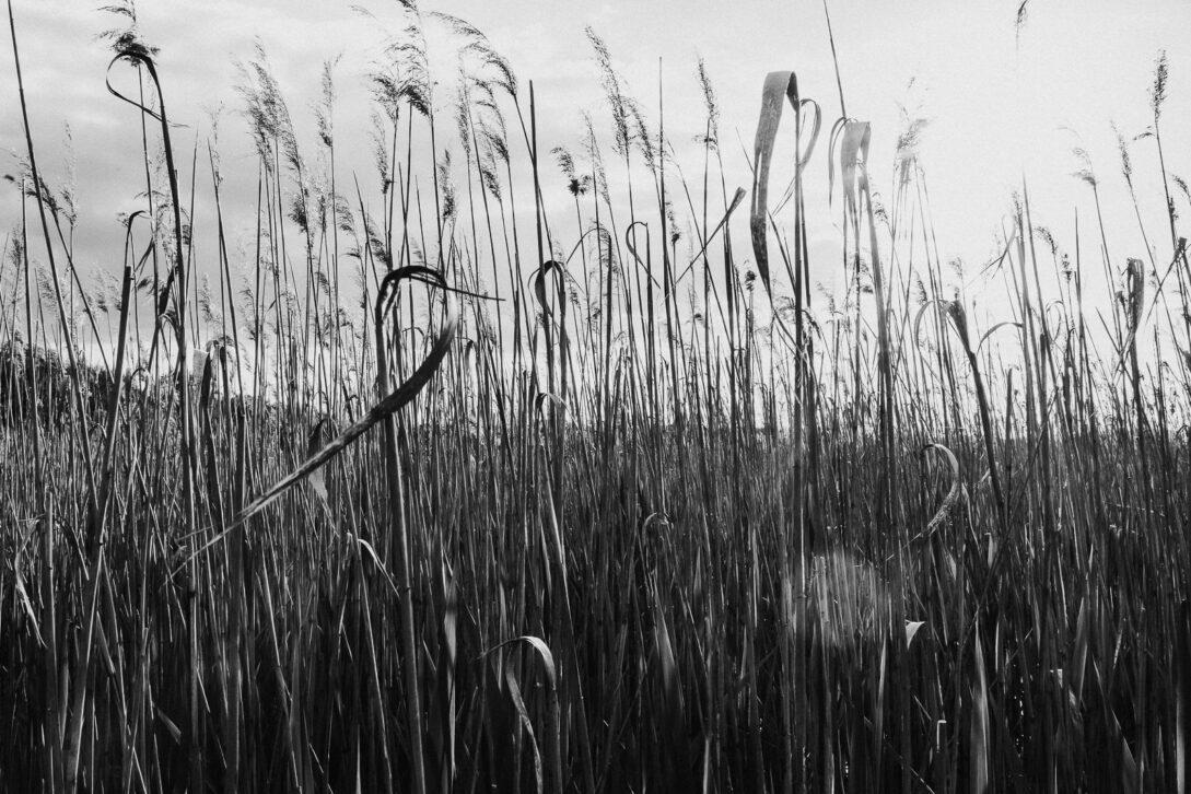 sesja nad jeziorem Piotr Czyżewski fotograf Legionowo